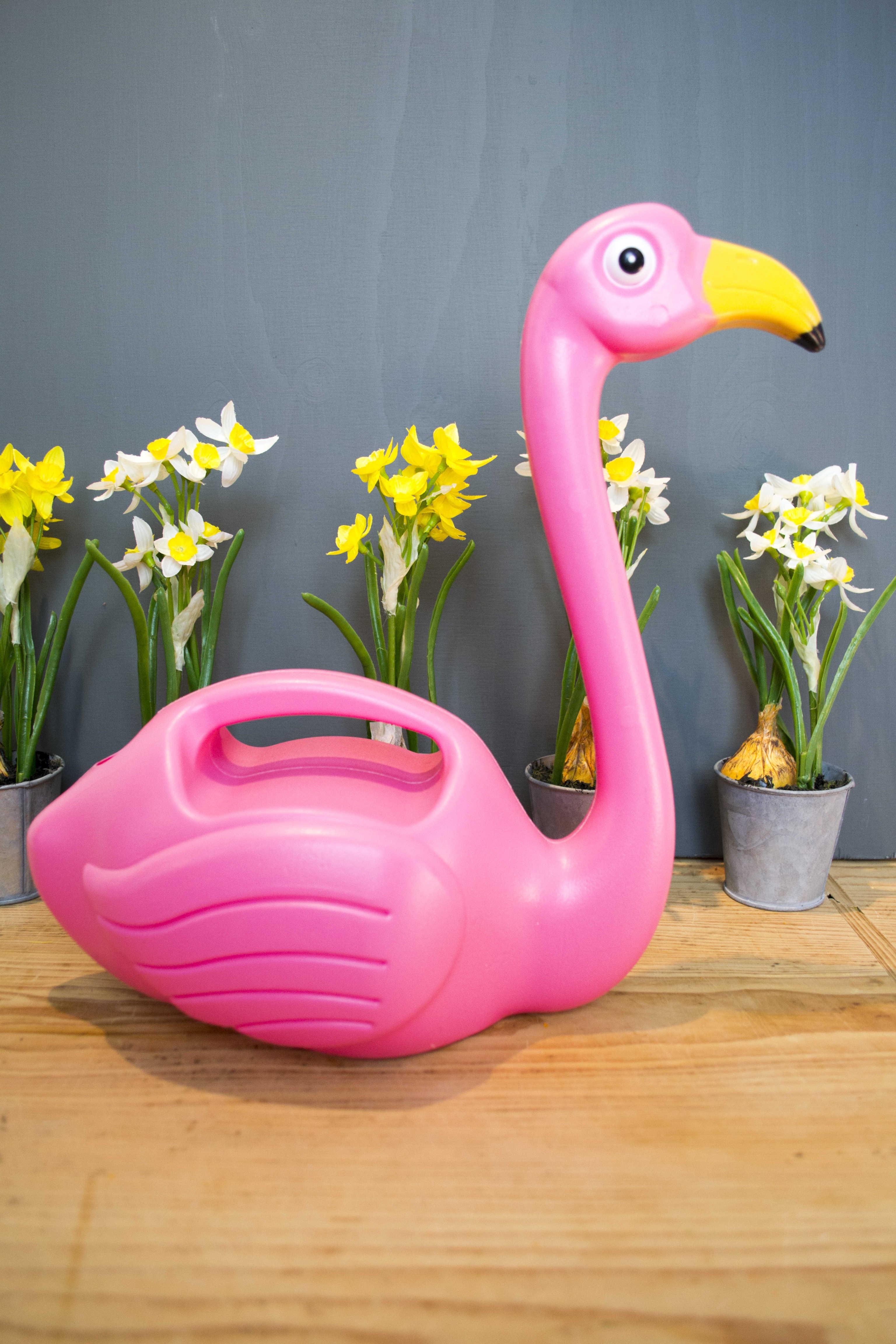 Flamingo Gift Ideas