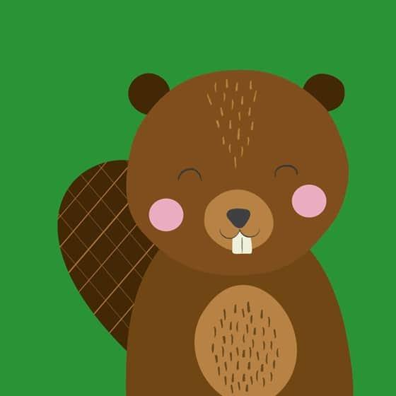 beaver-animal-friend-card-27634