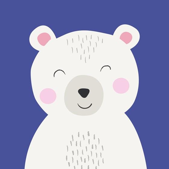 polar-bear-animal-27633