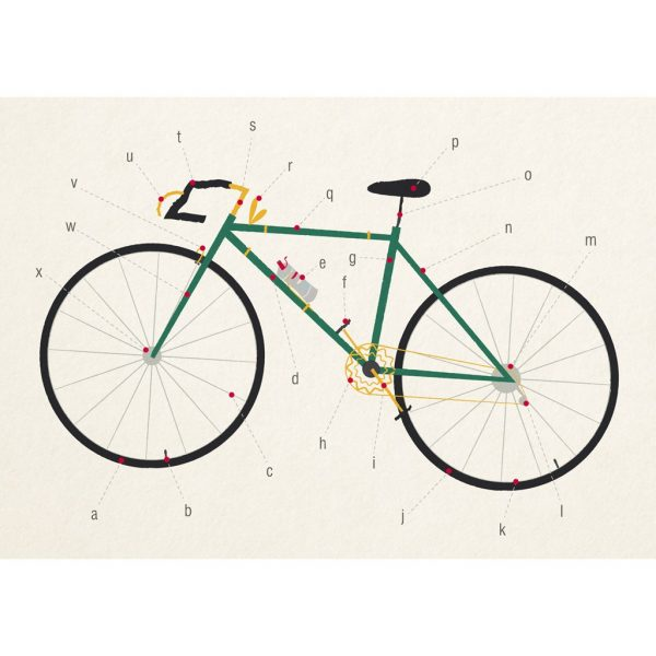 anatomy-bicycle-large-card-27628_front_0