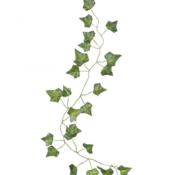 bb-212_-_decorative_vine_-_cut_out-min