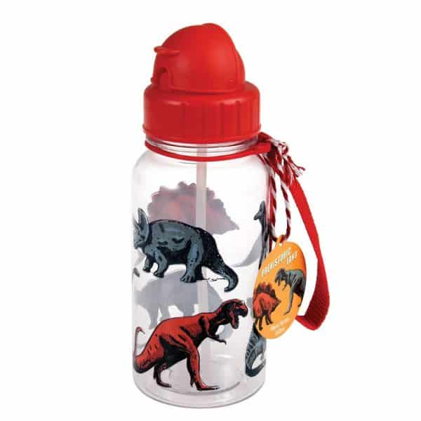 prehistoric-land-dinosaur-print-kids-water-bottle-27287_1