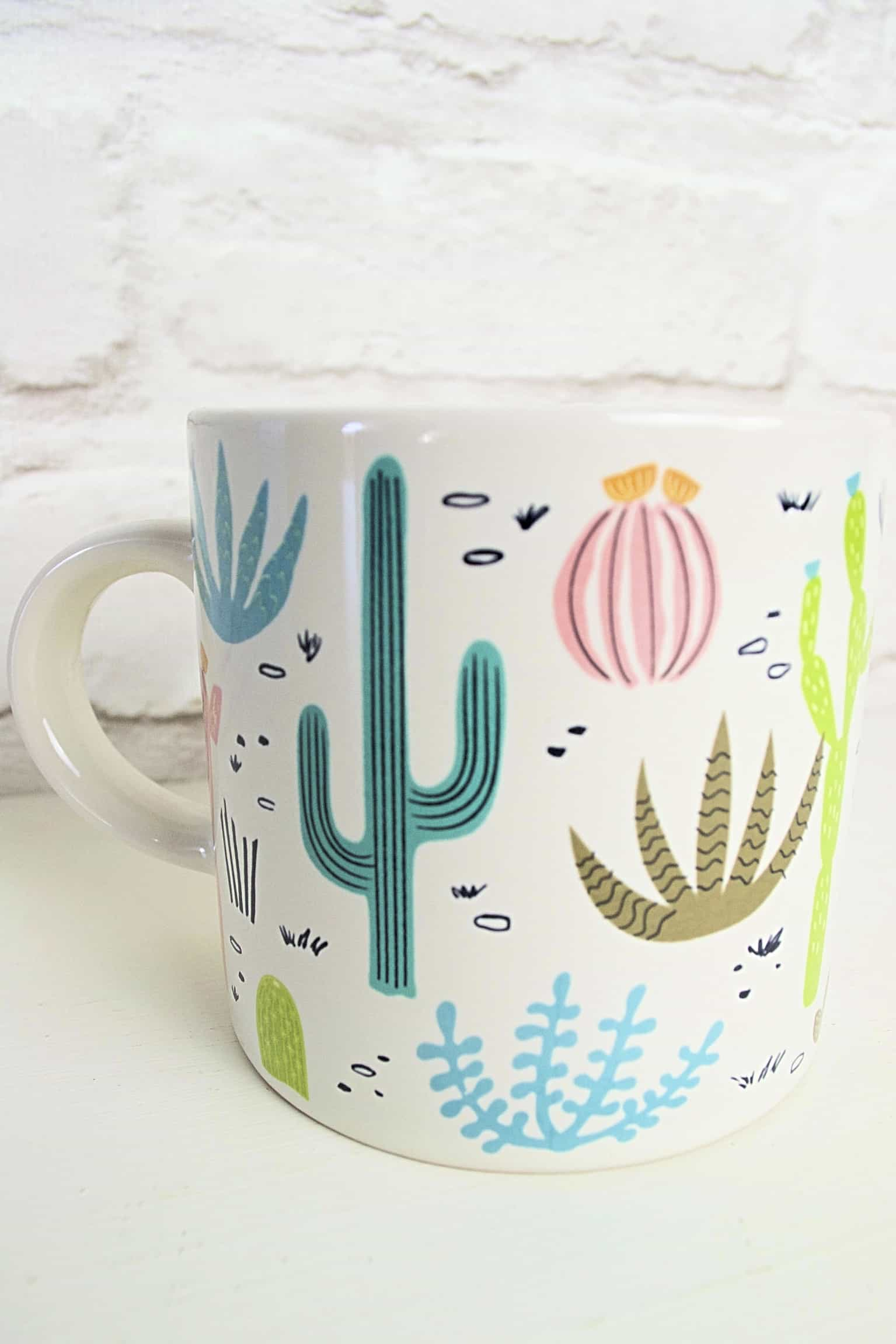 Cactus Themed Gifts