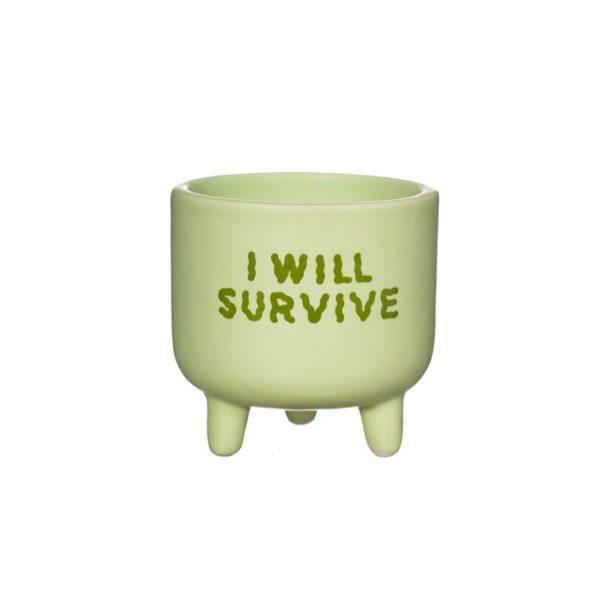 XC431_A_I_WIll_Survive_Mini_Planter