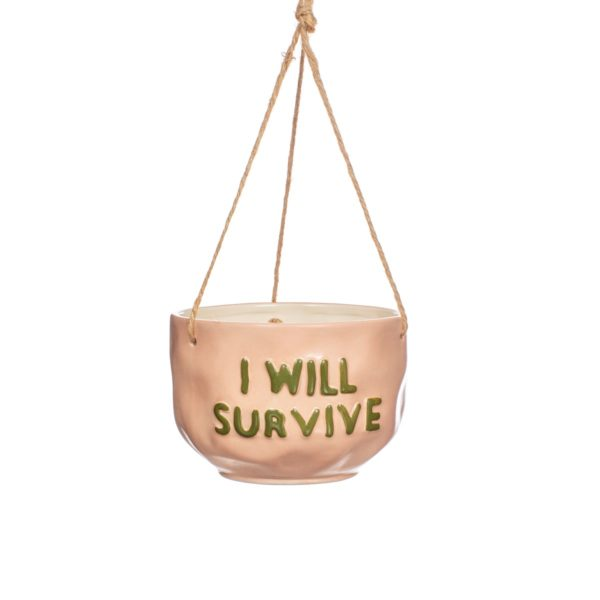 XC434_A_I_Will_Survive_Hanging_Planter