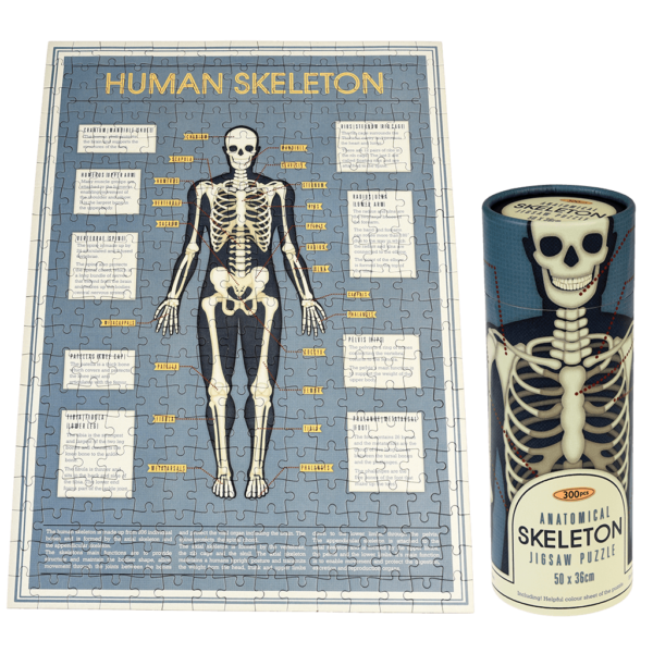 anatomical-skeleton-puzzle-tube-28202_0